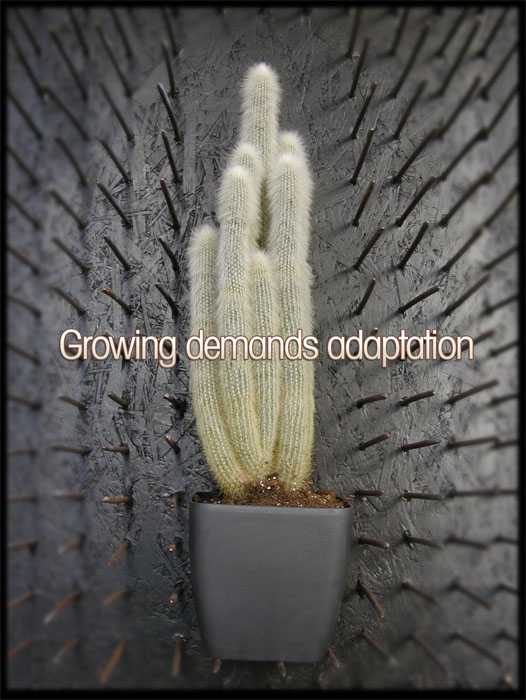 Growing demands adaptation